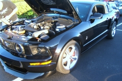 2007 Shelby Mustang Black Cardis