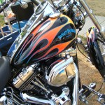 Mike 2009Harley Custom SoftTail6